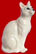 Короткошёрстная кошка